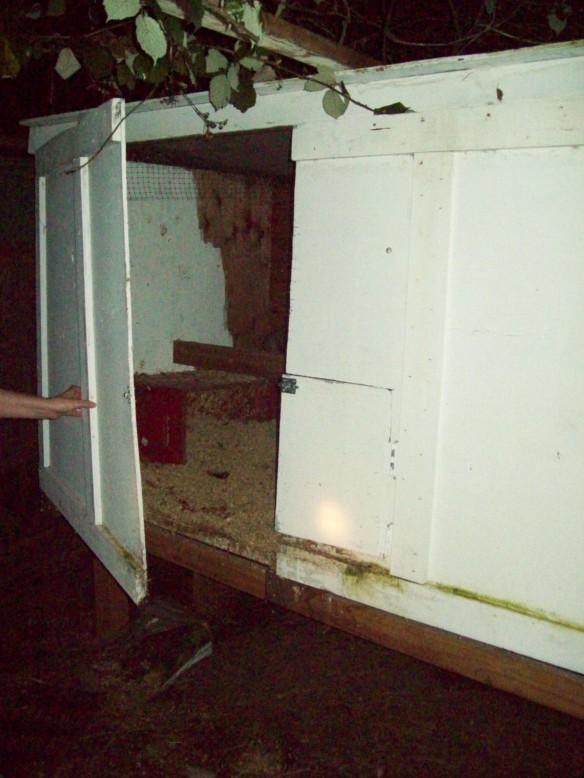 My wife opening the door of the coop, http://www.ishism.com