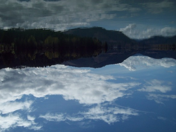 Reflected Horizon, Http://www.ishism.com