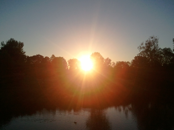 The setting Sun in Alton Baker Park, Eugene Oregon