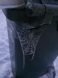 Spider Web in Ice. Photo taken with my LG smartphone. http://www.ishism.com