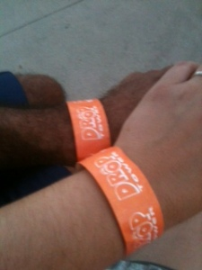 Kings Island Fast Lane Pass